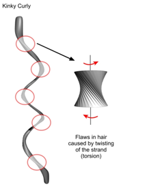 Flaws in hair caused by twisting
